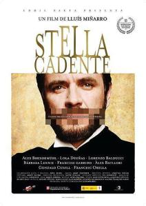 Estrella_fugaz_Stella_cadente-810310433-large